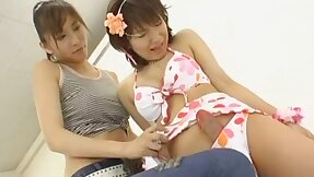 Hermaphrodite Lesbians